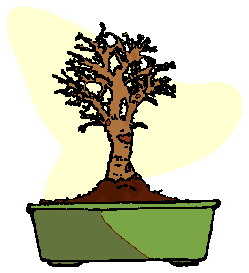 bonsai-immagine-animata-0018