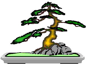 bonsai-immagine-animata-0029