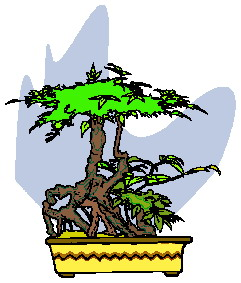 bonsai-immagine-animata-0039