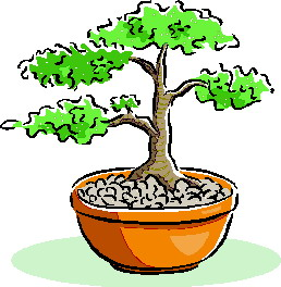 bonsai-immagine-animata-0040