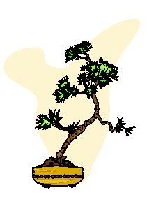 bonsai-immagine-animata-0046