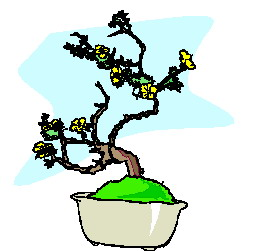 bonsai-immagine-animata-0047